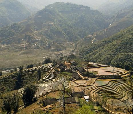Terrazas de arroz Vietnam