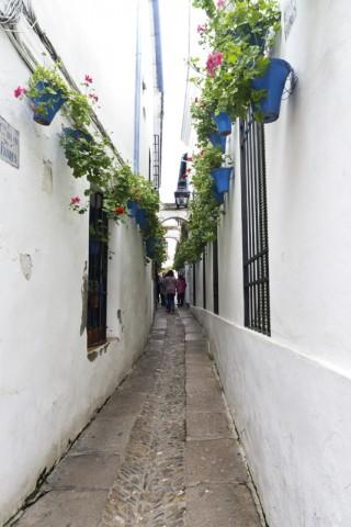 Calle de las Flores de Córdoba