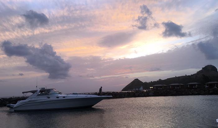 Santa Lucía, la isla de la moringa