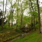 jardines-esterházy-austria