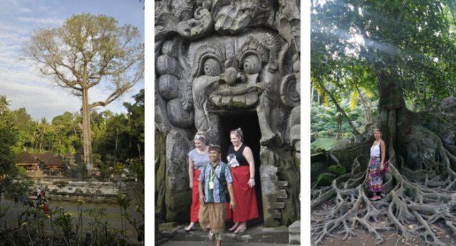 Guía de Bali para viajeros